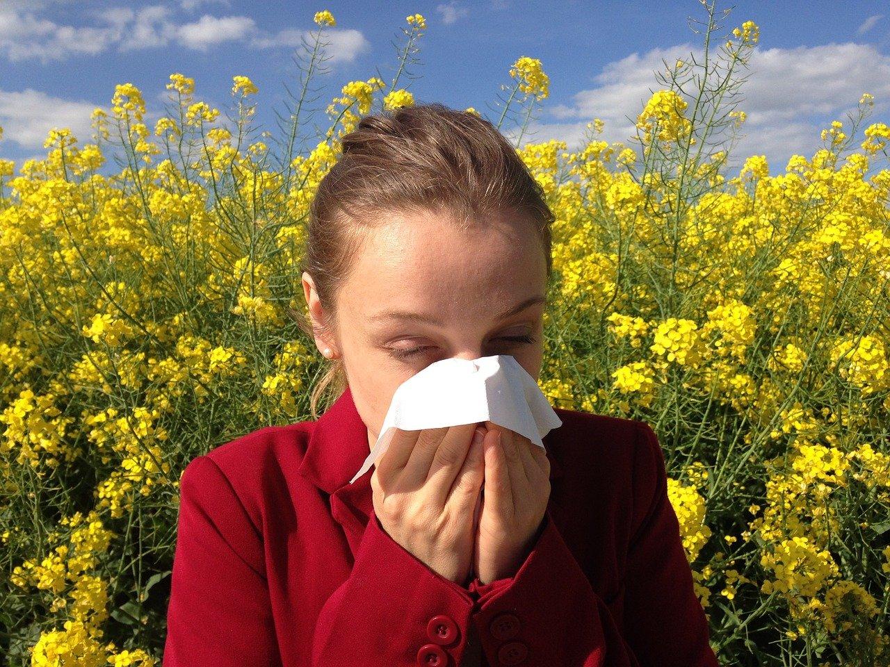 charleston allergy doctor